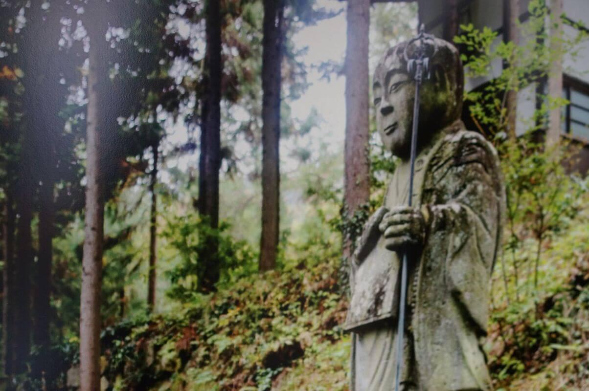 Выставка «Шепот японского леса» Мария Крашенинникова